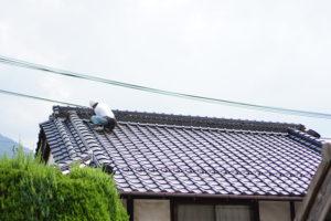 広島市安芸区中野の屋根やさん